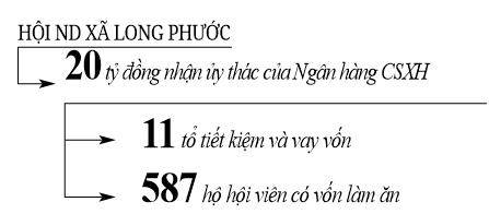 """(Gop) Lợn rừng, bò lai giúp """"đuổi nghèo"""" ở Long  Phước - Ảnh 3."""