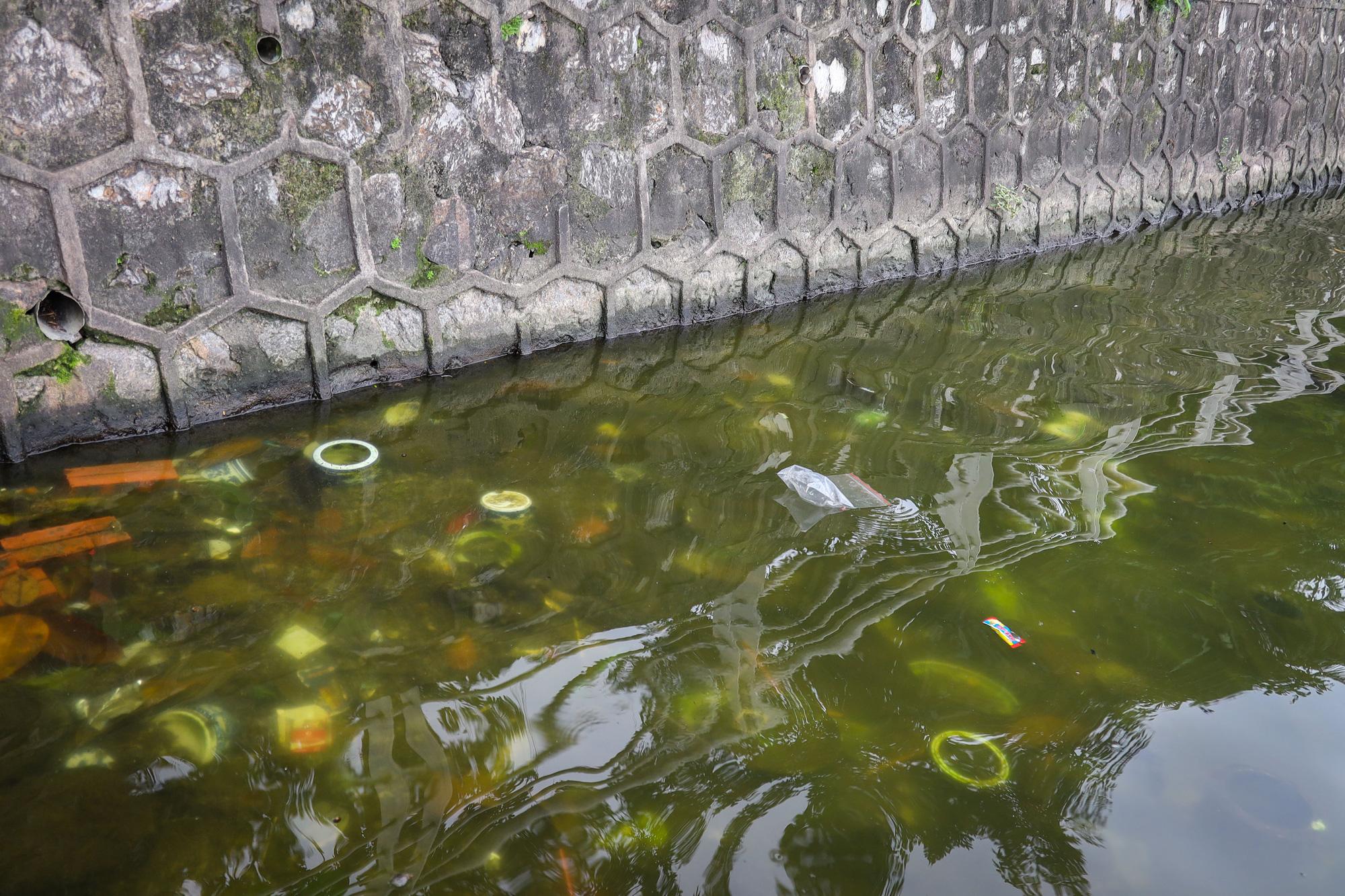 Nước hồ Tây có dấu hiệu ô nhiễm, bất ngờ chuyển màu xanh rêu đậm - Ảnh 2.