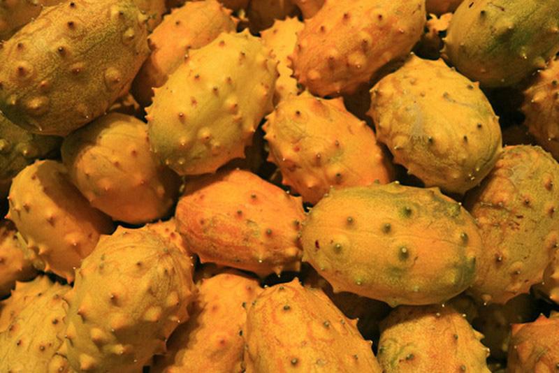 3 loại quả ở Việt Nam mọc dại đầy đường, sang nước ngoài thành của ngon vật lạ - Ảnh 1.