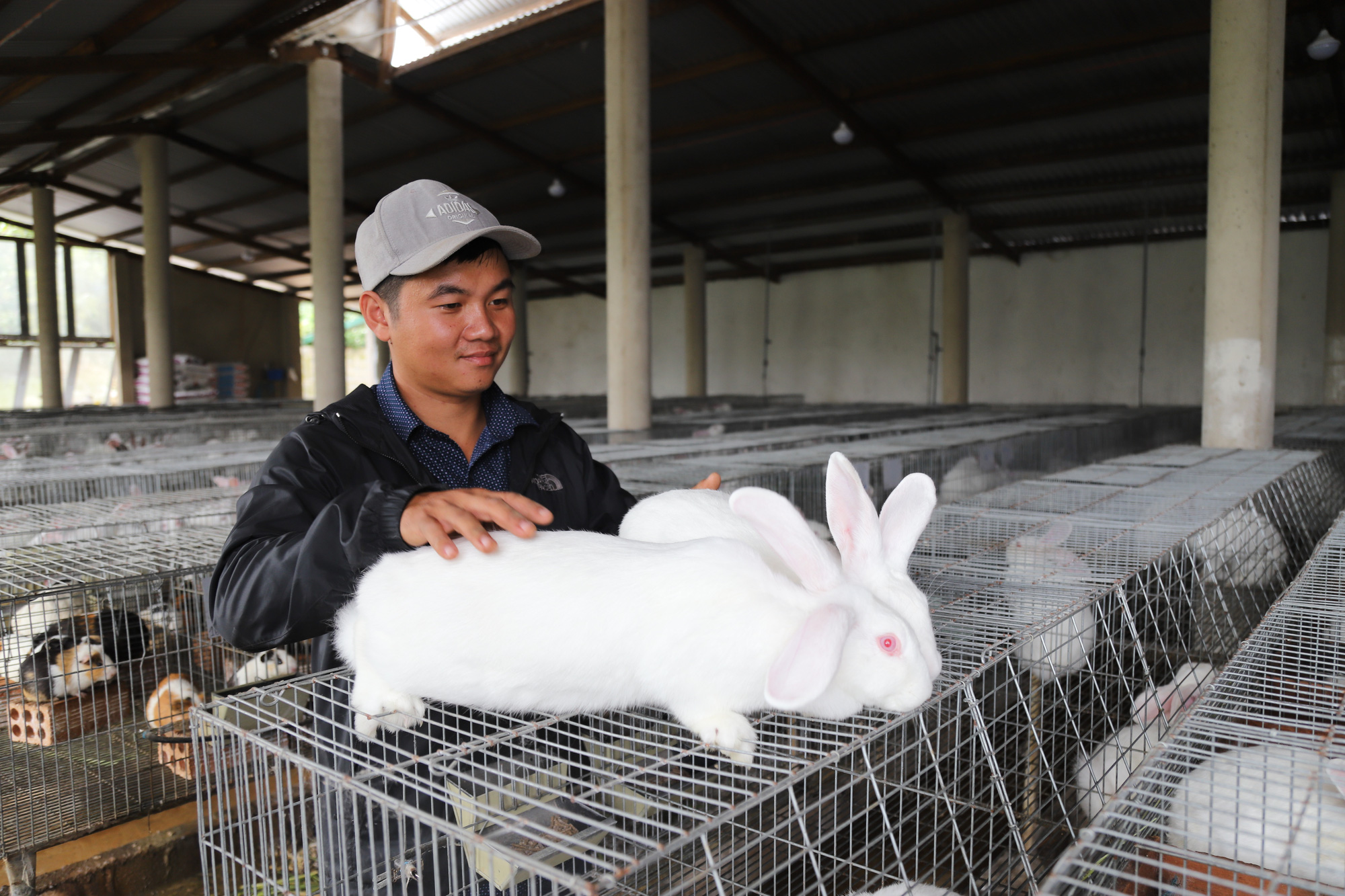 Vừa nuôi thỏ, vừa nuôi dê, 9X này thu nhập tiền tỷ mỗi năm - Ảnh 1.
