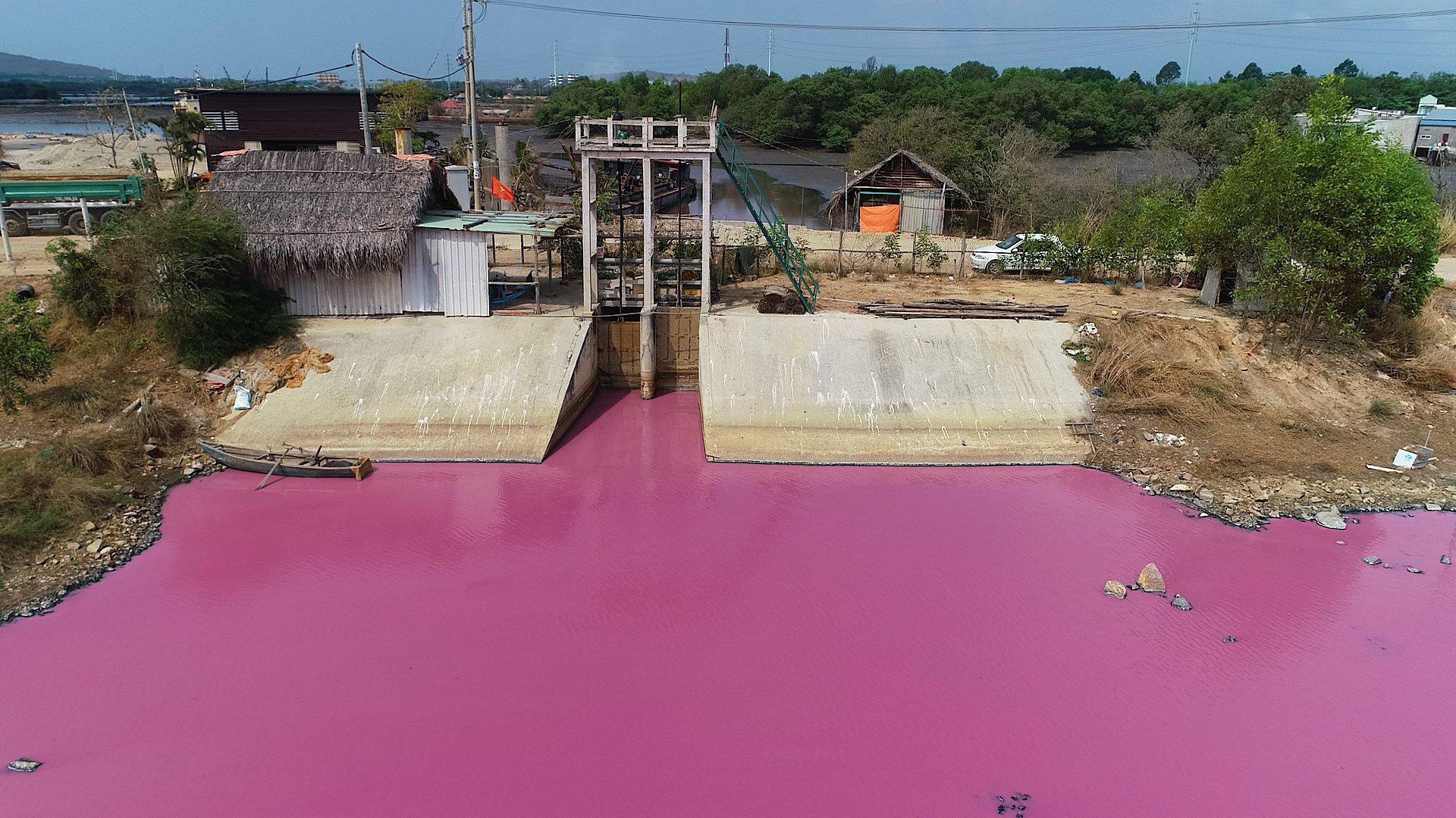 """Nước đầm trước cống số 6 thành màu hồng: Nguyên nhân do... tảo nở hoa, kiến nghị làm du lịch """"đặc biệt"""" - Ảnh 3."""