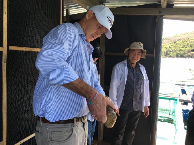 Loài hải sâm quý hiếm, đắt tiền nào vừa được nhân giống thành công ở tỉnh Khánh Hòa? - Ảnh 3.