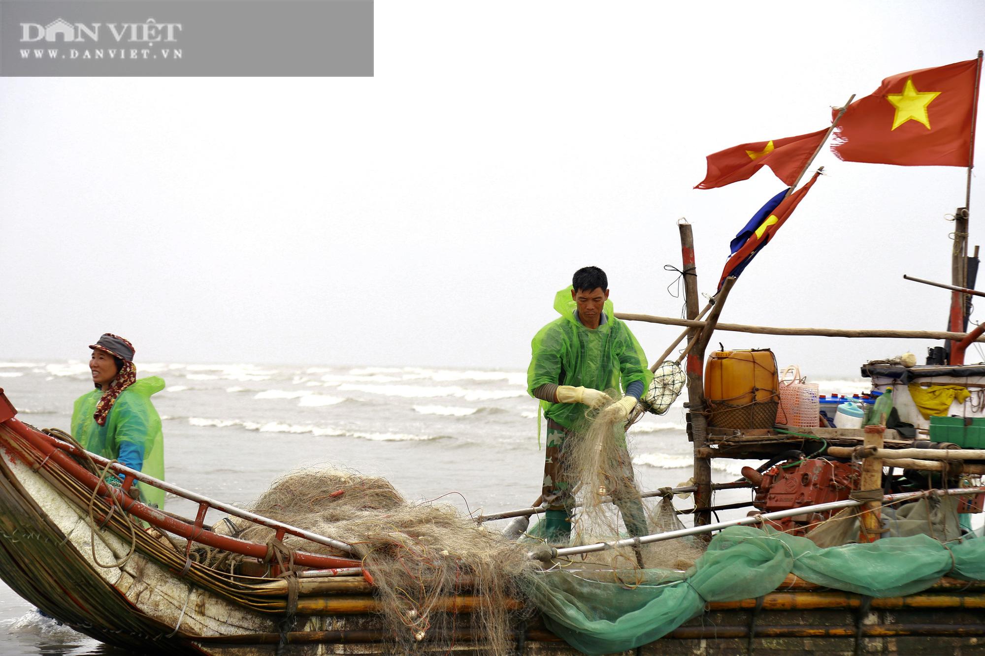 """Trung Quốc tạm ngừng """"ăn"""", ngư dân Nghệ An đành bán rẻ """"lộc biển"""" cho thương lái - Ảnh 2."""