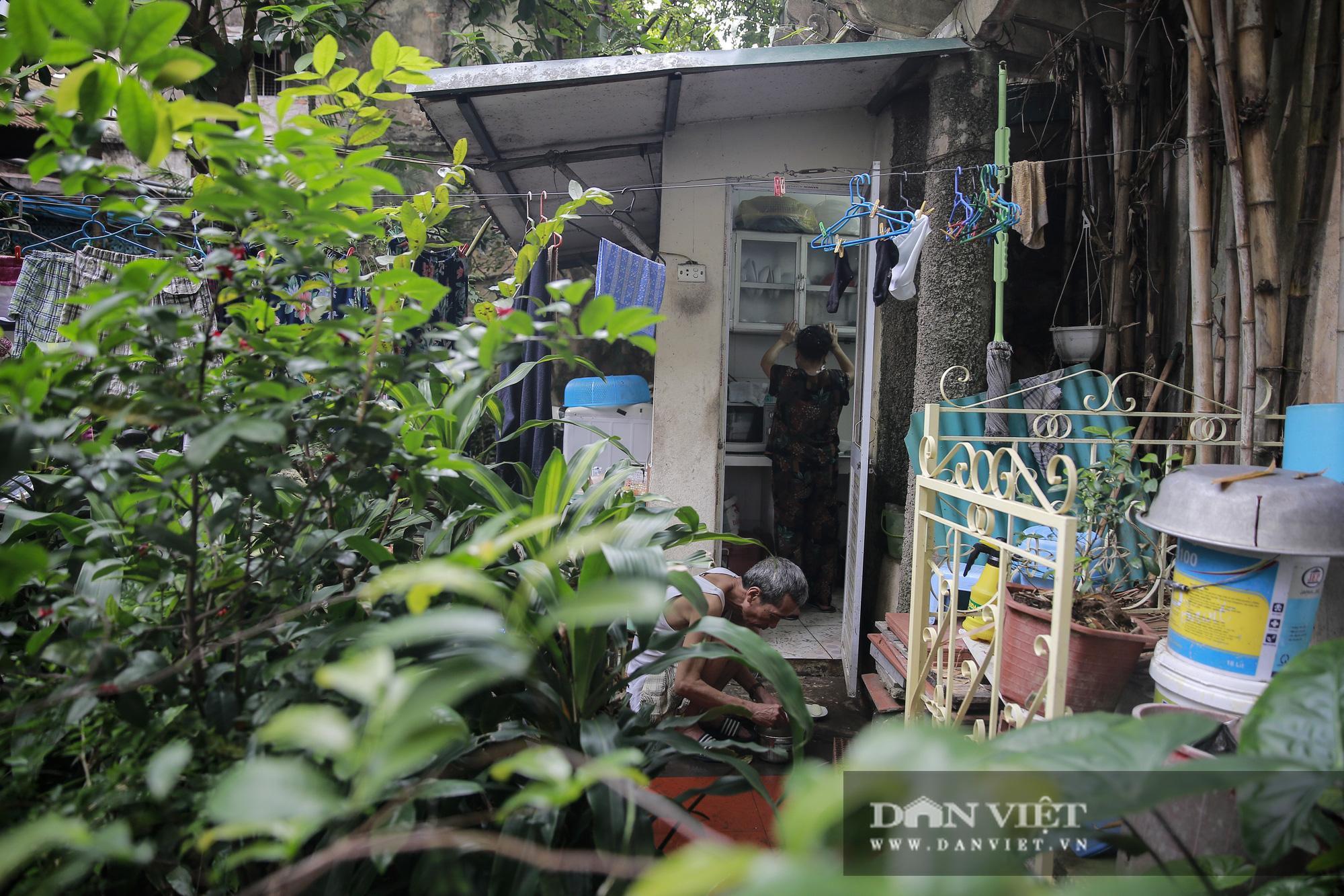 Khám phá ngôi nhà vườn xuyên phố duy nhất ở phố cổ Hà Nội - Ảnh 13.