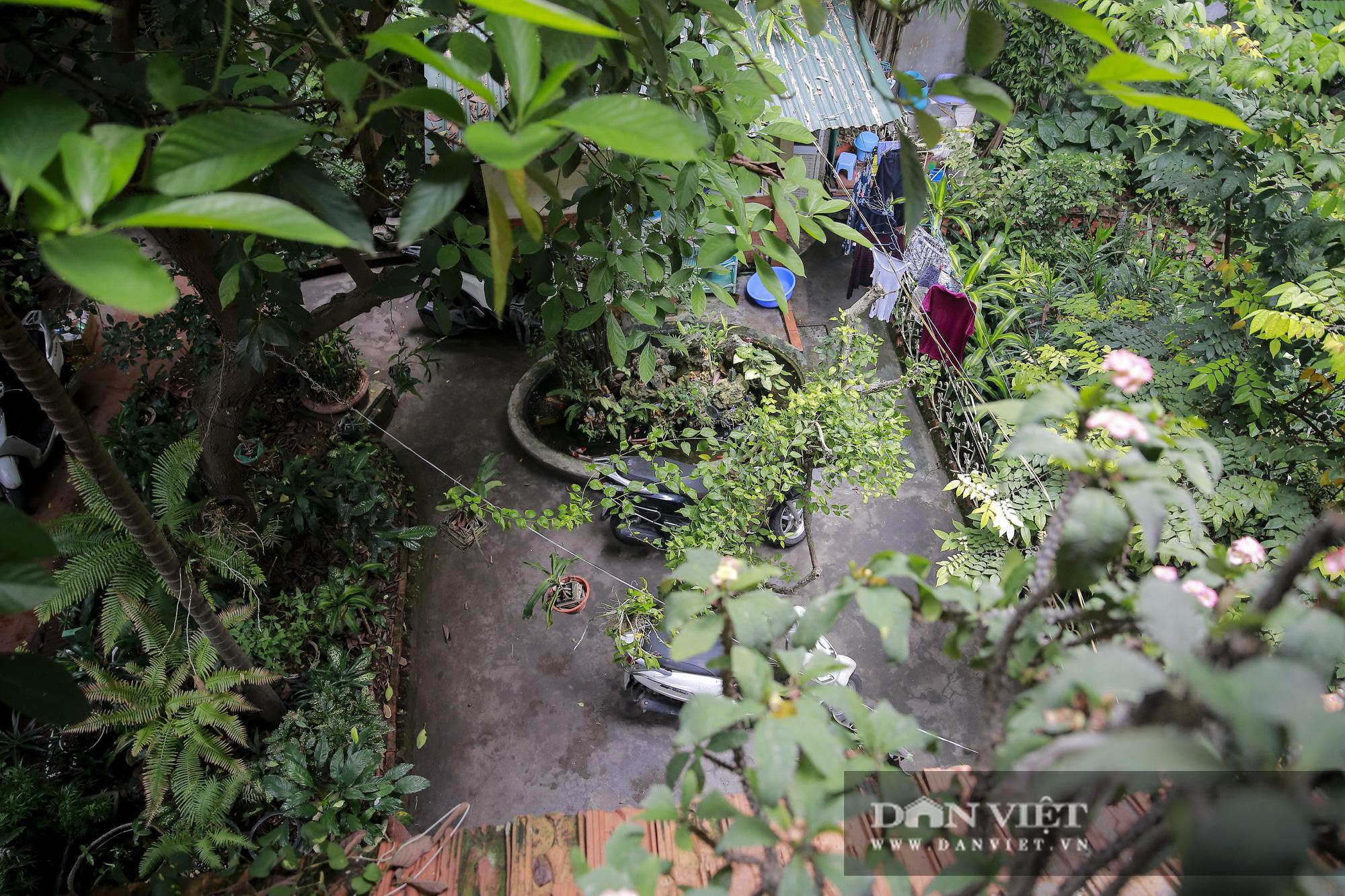 Khám phá ngôi nhà vườn xuyên phố duy nhất ở phố cổ Hà Nội - Ảnh 14.