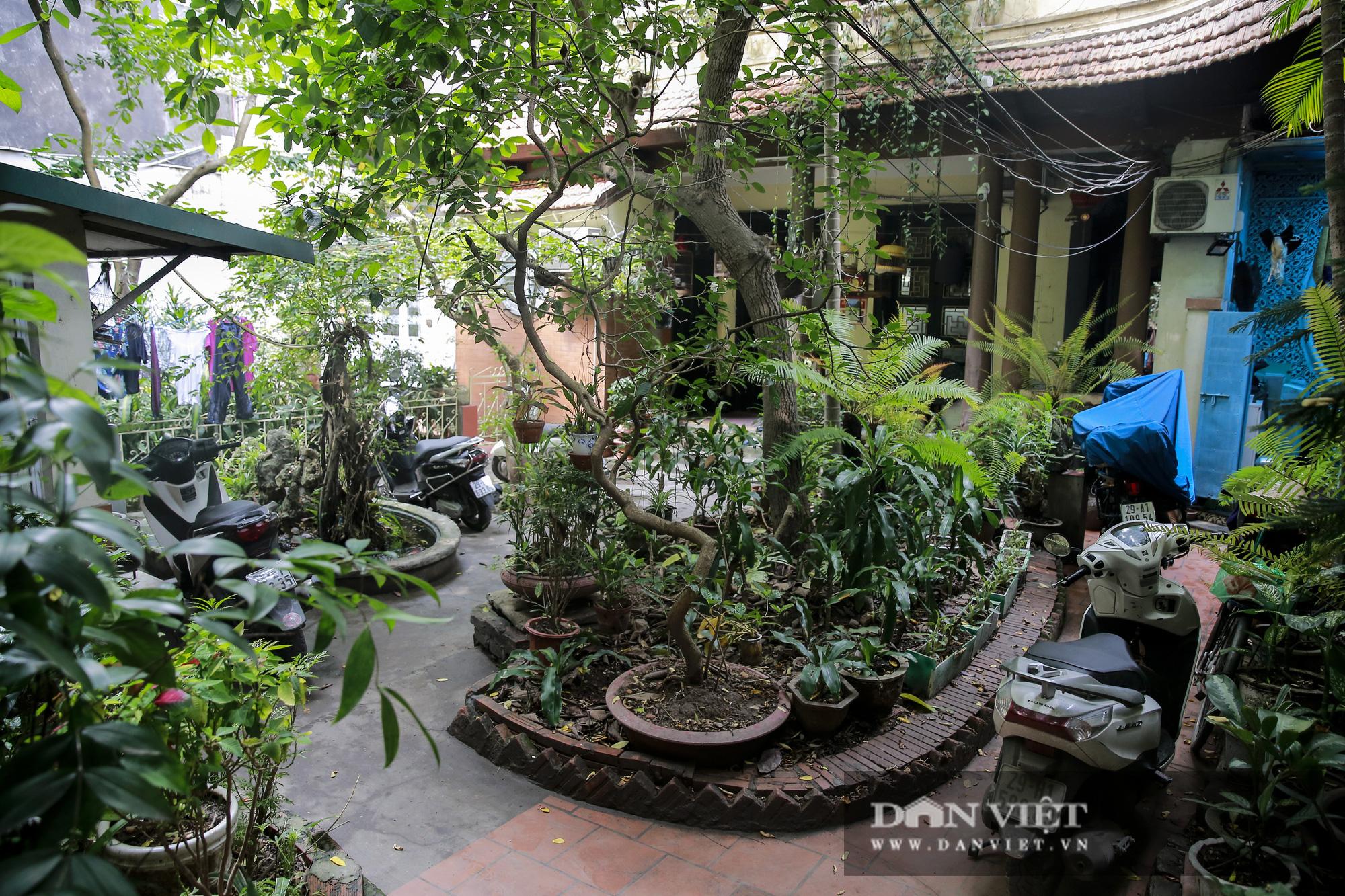Khám phá ngôi nhà vườn xuyên phố duy nhất ở phố cổ Hà Nội - Ảnh 2.