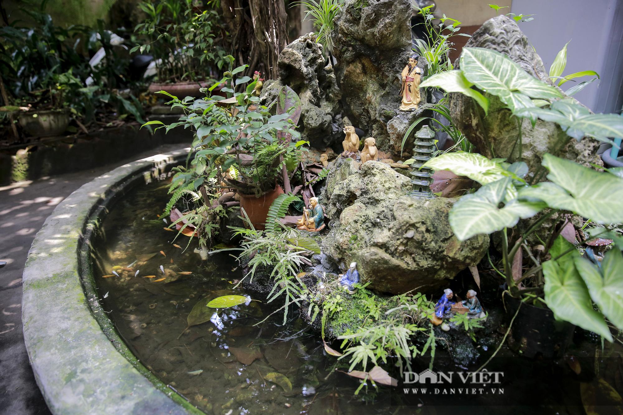 Khám phá ngôi nhà vườn xuyên phố duy nhất ở phố cổ Hà Nội - Ảnh 5.
