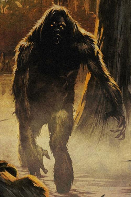 """Bí ẩn quái thú """"người lông"""" cai quản rừng xanh gây kinh hãi - Ảnh 4."""