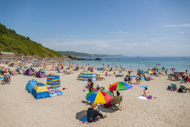 Các bãi biển ở Anh phải đối mặt với sự xâm lược kinh hoàng của cá mập - Ảnh 4.