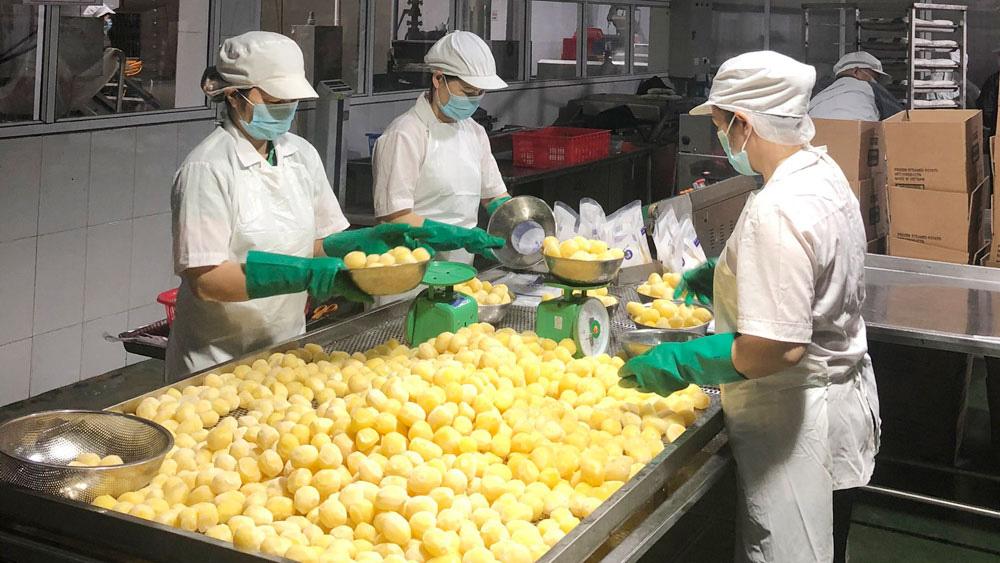 Nông sản Bắc Giang rộng đường xuất khẩu - Ảnh 1.
