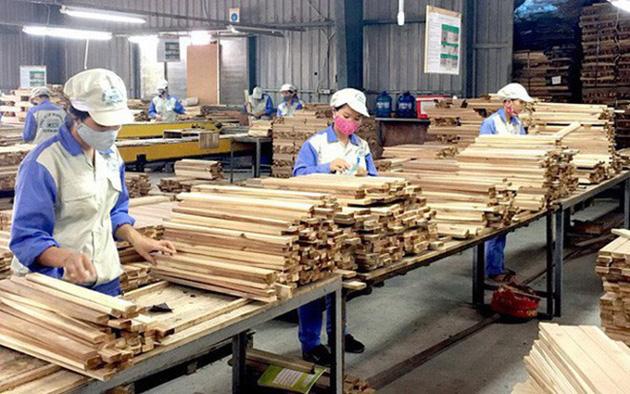 Nhập khẩu gỗ nguyên liệu: Cần đề phòng nguy cơ điều tra phòng vệ thương mại - Ảnh 1.