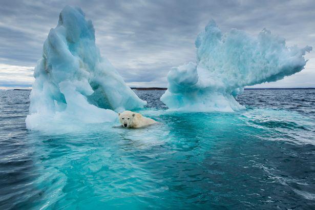 Trong tương lai, ngày sẽ trở nên dài hơn do băng ở hai cực tan chảy - Ảnh 2.