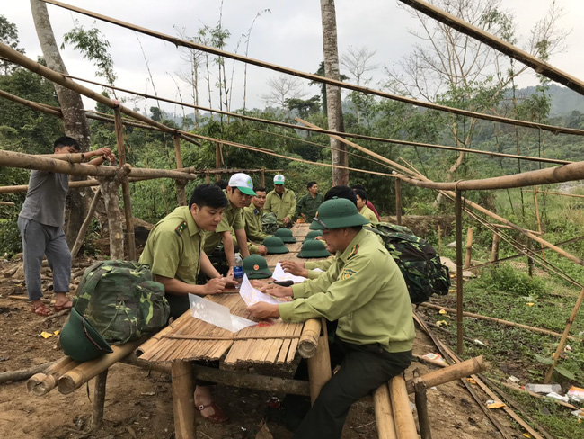 Dự án Rừng và Đồng bằng Việt Nam do USAID tài trợ trên 31 triệu USD - Ảnh 2.