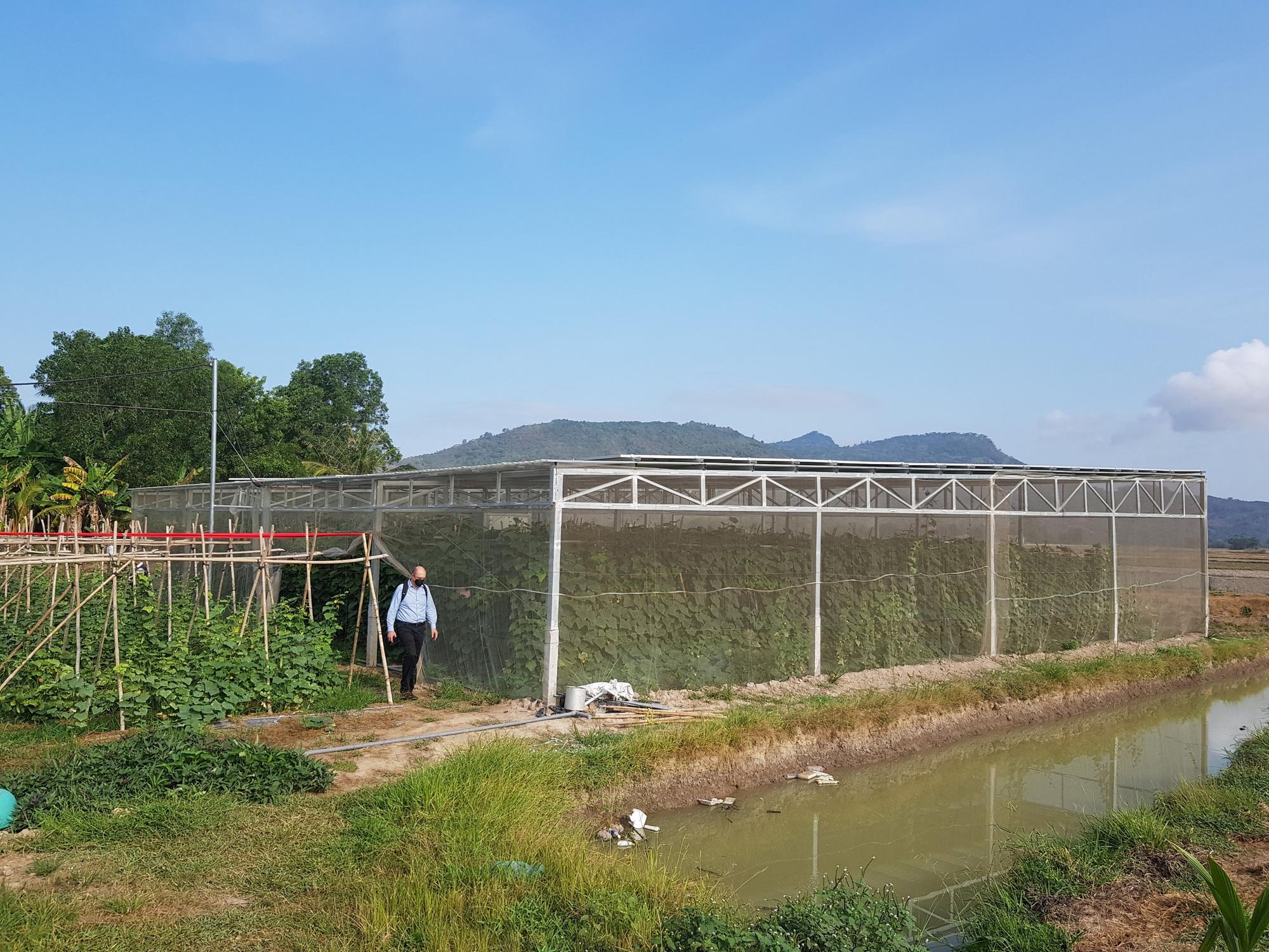 """""""Lợi nhuận kép"""" mô hình pin năng lượng mặt trời trên diện tích canh tác giúp hộ Khmer thoát nghèo - Ảnh 1."""