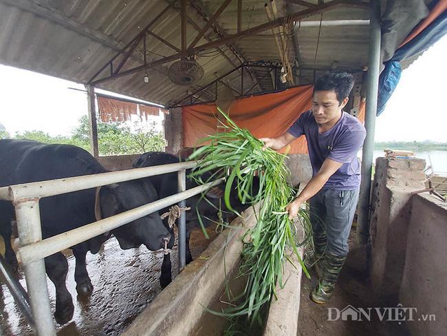 Hà Nội đặt mục tiêu nông dân giàu có, dân chủ, bình đẳng - Ảnh 2.