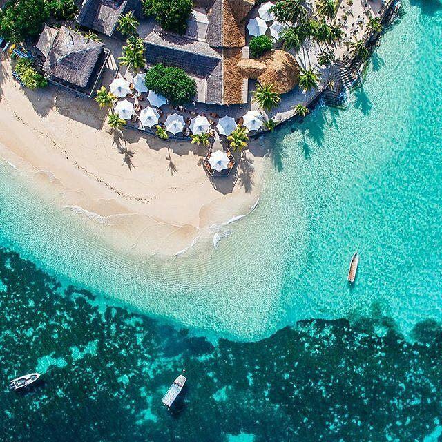 Vì sao Fiji không bao giờ có người mắc bệnh ung thư? - Ảnh 2.