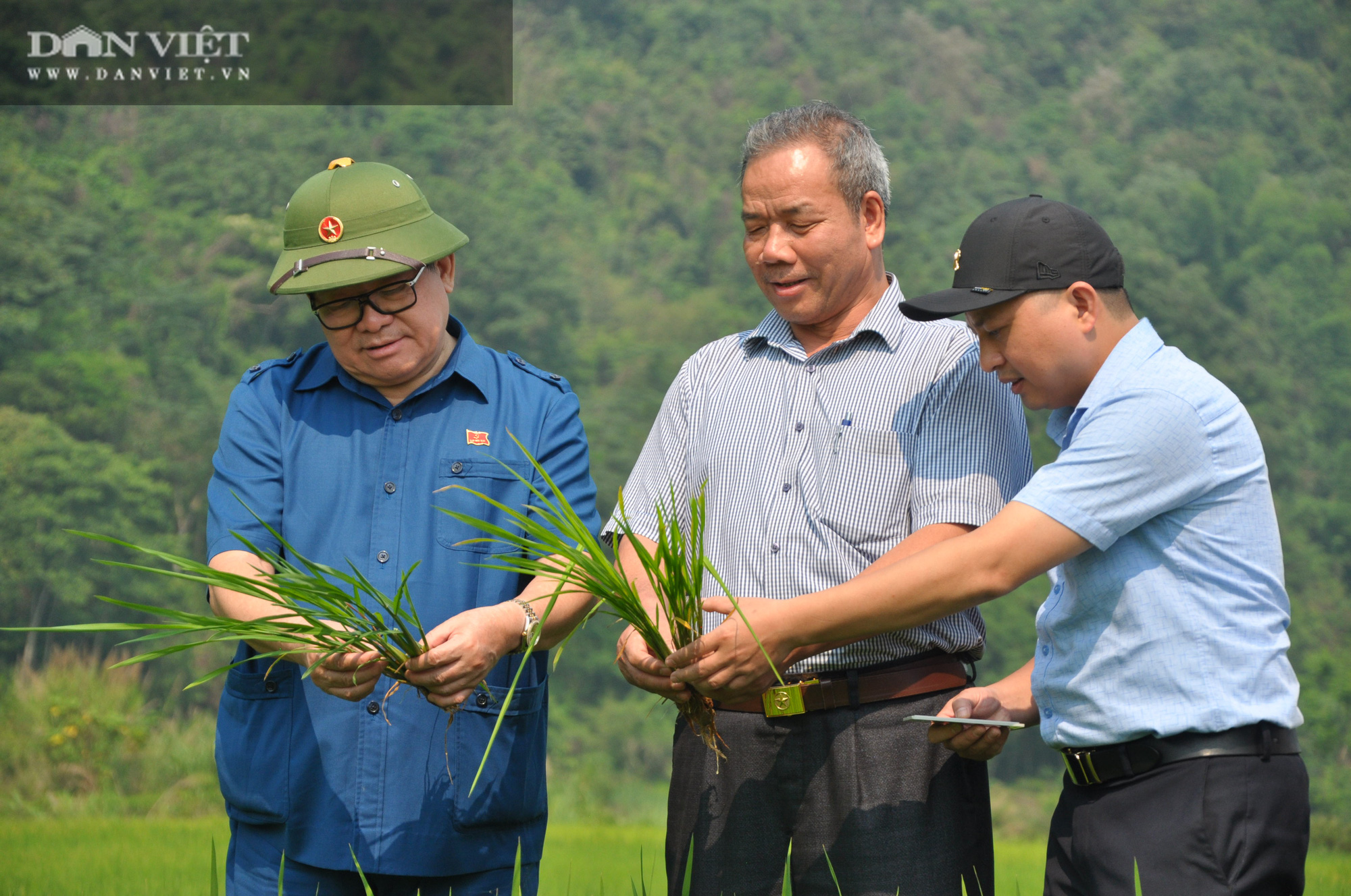 """Chủ tịch Hội Nông dân Việt Nam """"mách nước"""" giúp dân Lai Châu sản xuất lúa theo tiêu chuẩn quốc tế - Ảnh 3."""