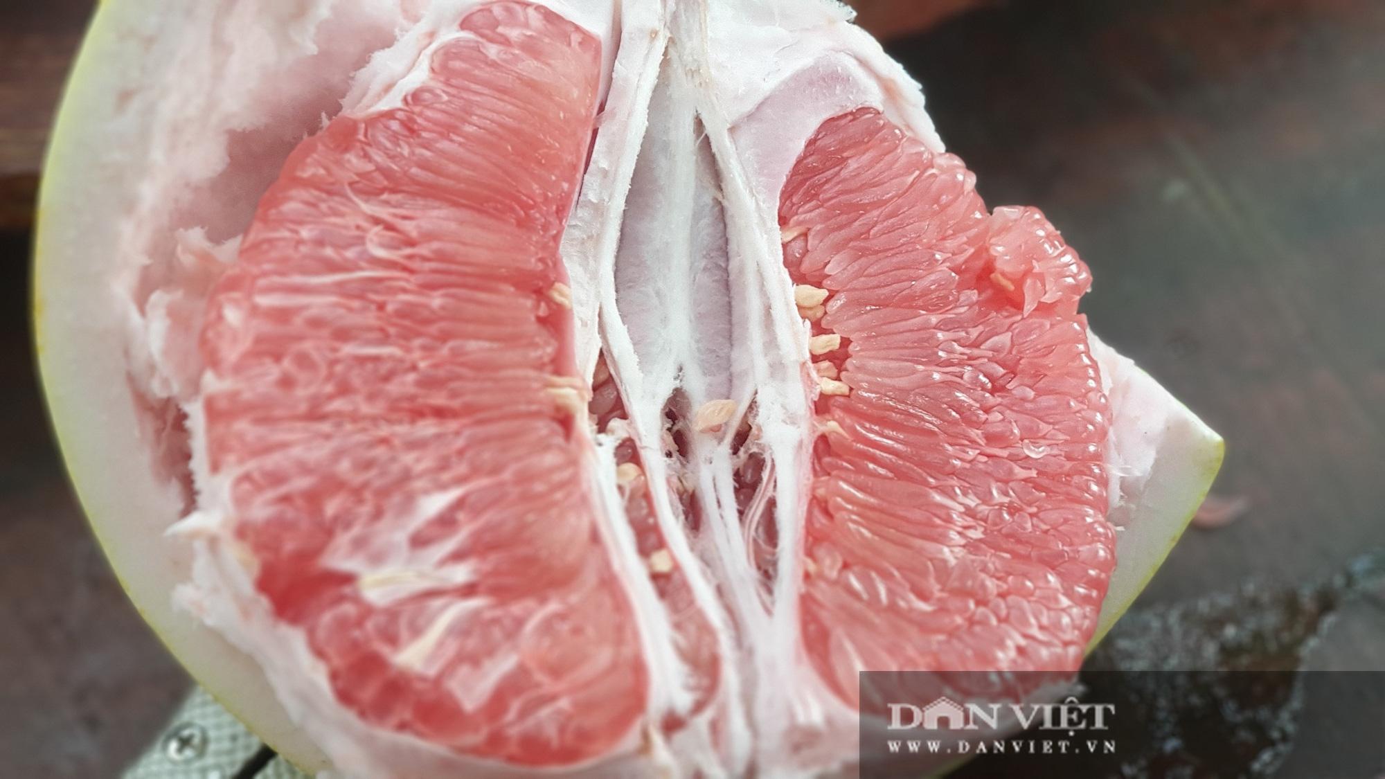Rất lạ: Trái bưởi màu hồng rất to, treo từng chùm trong vườn nhìn đã mắt ở miền Tây - Ảnh 6.