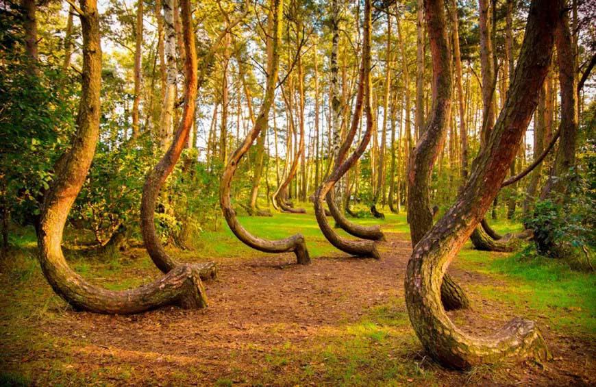Những địa điểm bí ẩn nhất trên toàn thế giới gây tò mò cho khách du lịch - Ảnh 4.
