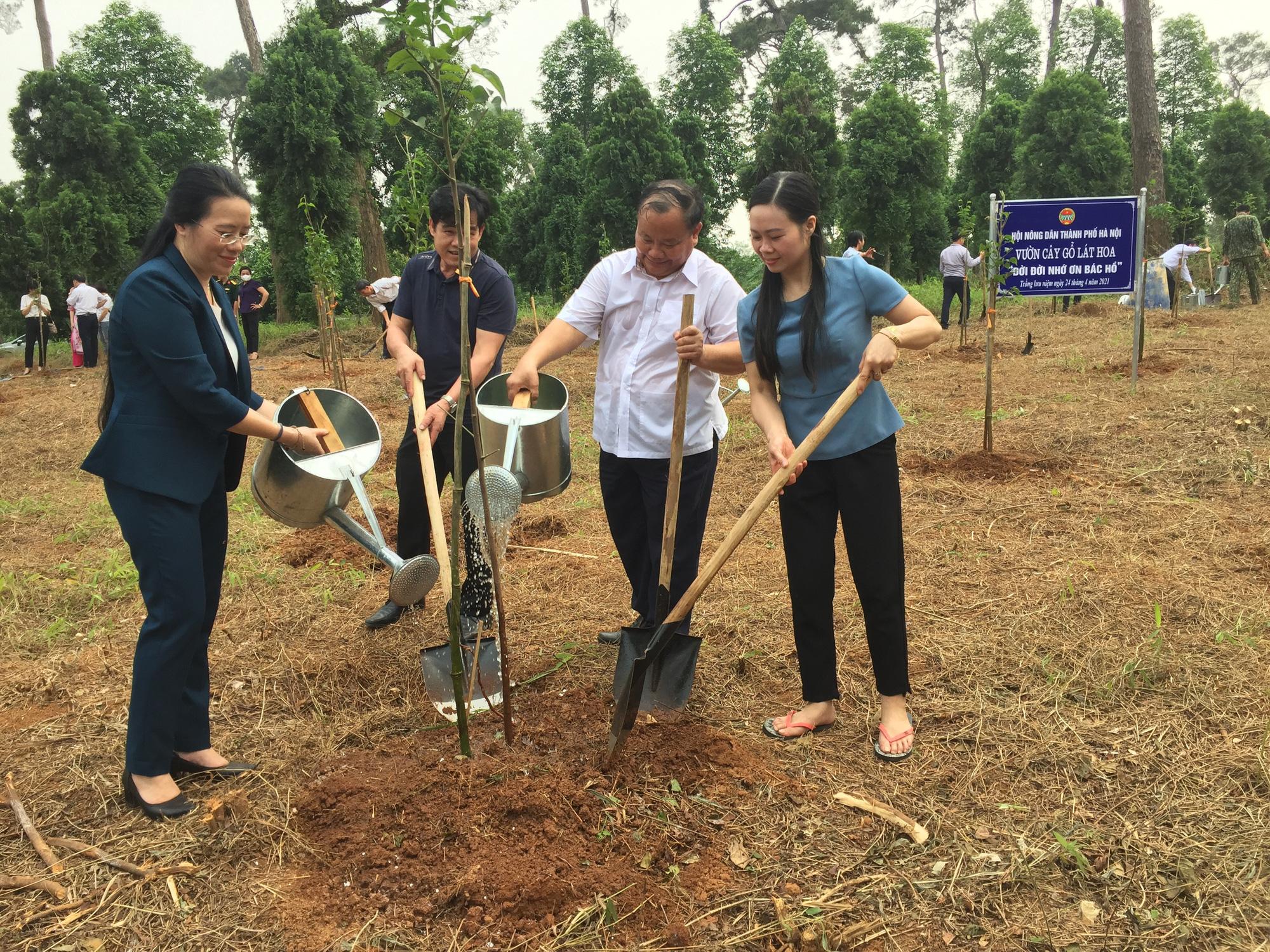 Hơn 1,5 triệu nông dân thi đua sản xuất kinh doanh giỏi, Hà Nội báo công dâng Bác - Ảnh 4.