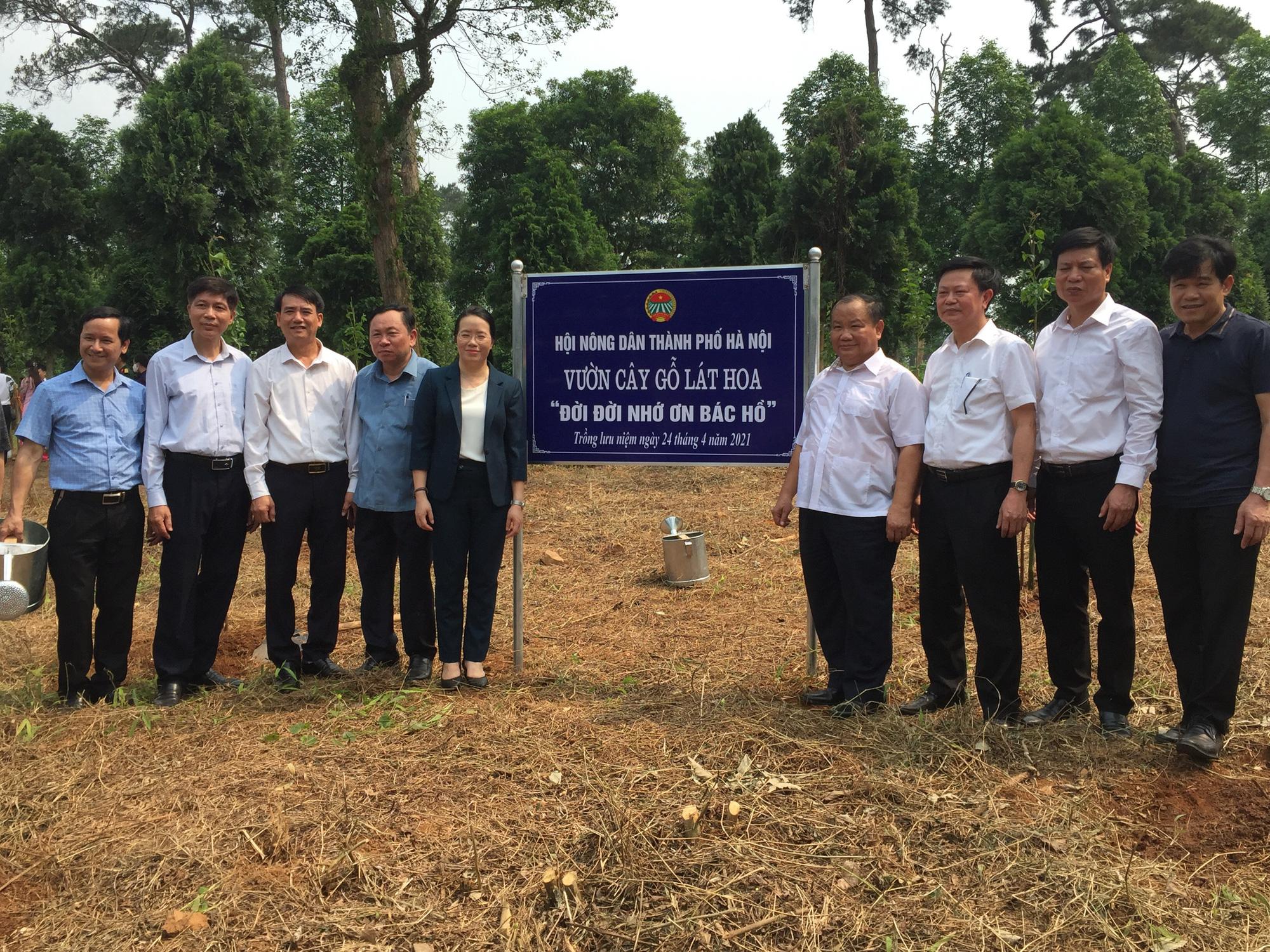 Hơn 1,5 triệu nông dân thi đua sản xuất kinh doanh giỏi, Hà Nội báo công dâng Bác - Ảnh 5.