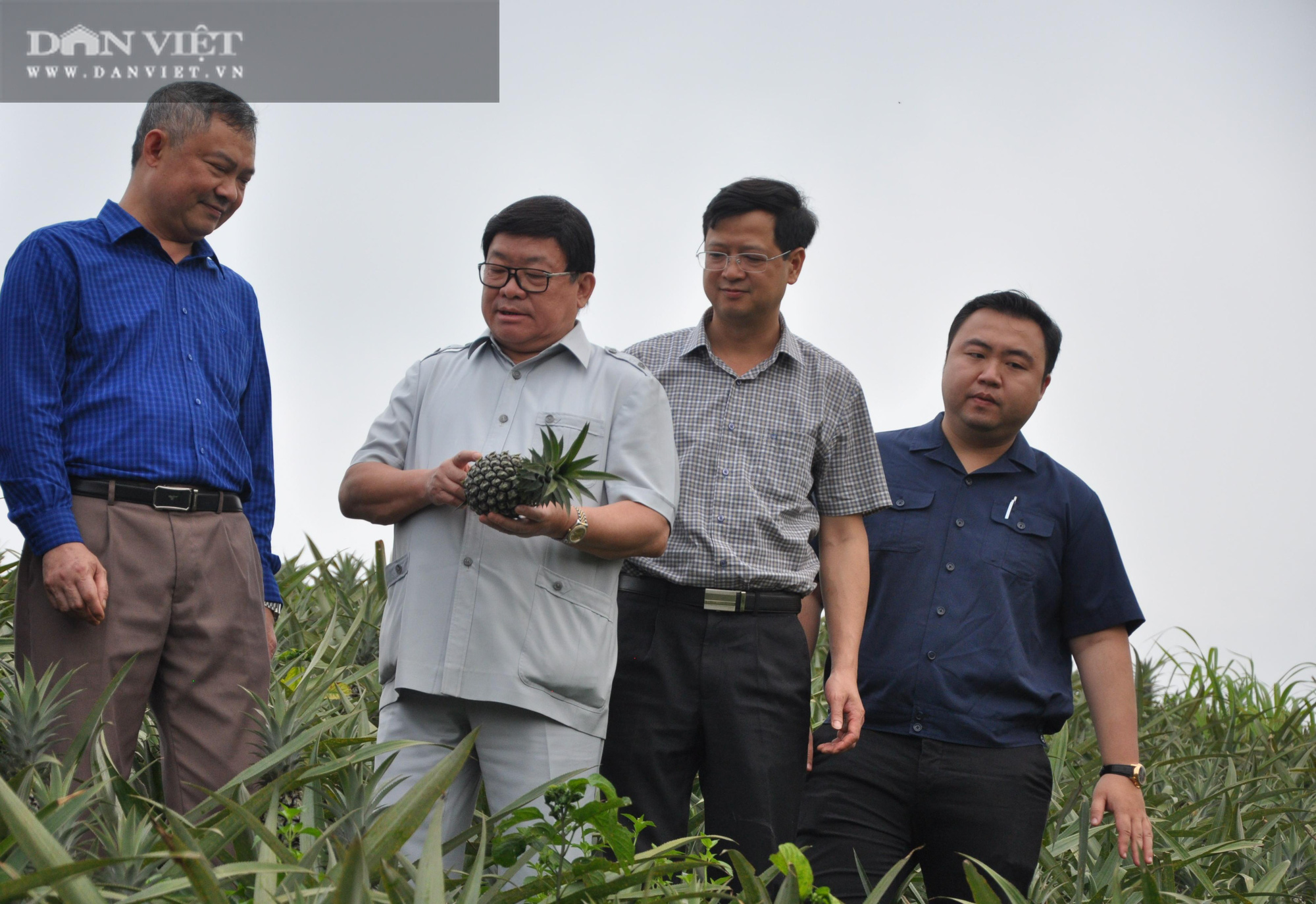Chủ tịch Hội Nông dân Việt Nam thăm nhà máy chế biến rau quả xuất khẩu lớn ở huyện biến giới - Ảnh 1.