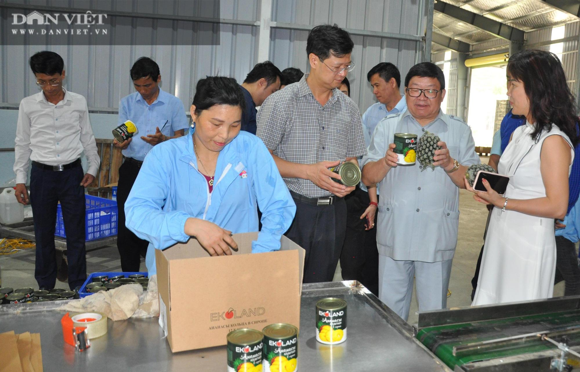 Chủ tịch Hội Nông dân Việt Nam thăm nhà máy chế biến rau quả xuất khẩu lớn ở huyện biên giới - Ảnh 4.