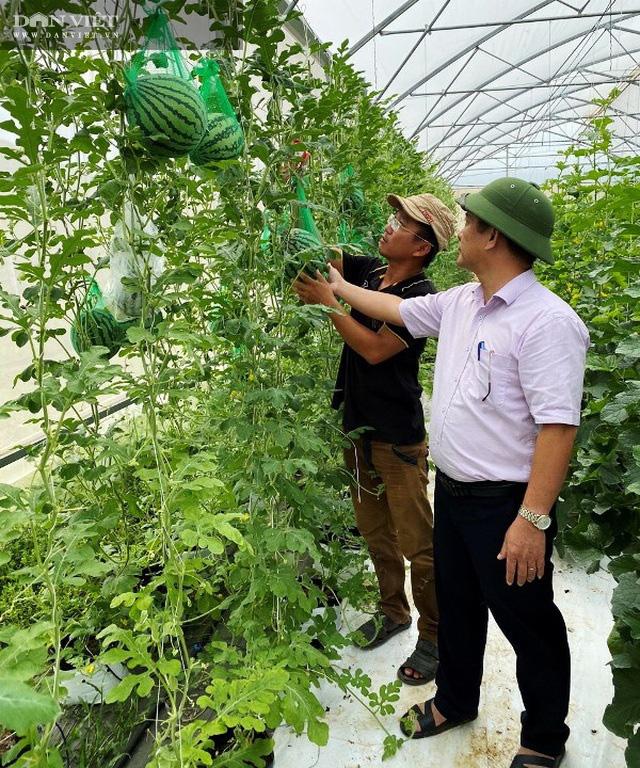 """Bình Định: Ứng dụng khoa học vào sản xuất nông nghiệp công nghệ cao, nông dân muốn mang đến sản phẩm """"siêu sạch"""" - Ảnh 1."""