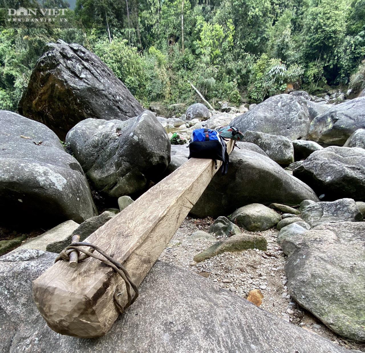 """Phá Vườn quốc gia Hoàng Liên (Bài 3): Kiểm lâm """"lượn qua"""", lâm tặc vẫn chở gỗ ầm ầm - Ảnh 2."""