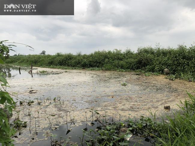 Ám ảnh khủng khiếp ở làng giấy Phú Lâm: Ô nhiễm đến con ruồi cũng không sống nổi, công nhân bán mòn sức - Ảnh 10.