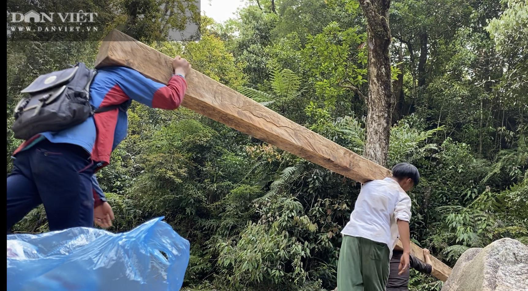 """Video điều tra: Khi rừng Quốc gia trở thành """"miếng mồi"""" béo bở cho lâm tặc - Ảnh 2."""