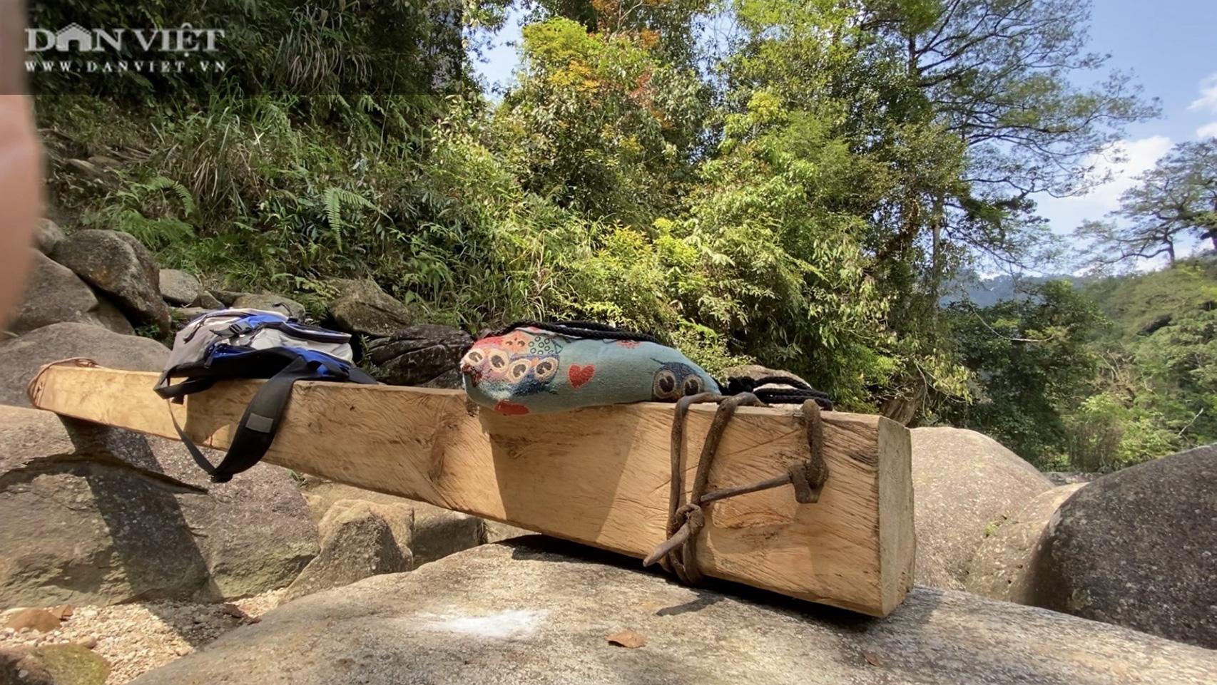 """Video điều tra: Khi rừng Quốc gia trở thành """"miếng mồi"""" béo bở cho lâm tặc - Ảnh 3."""