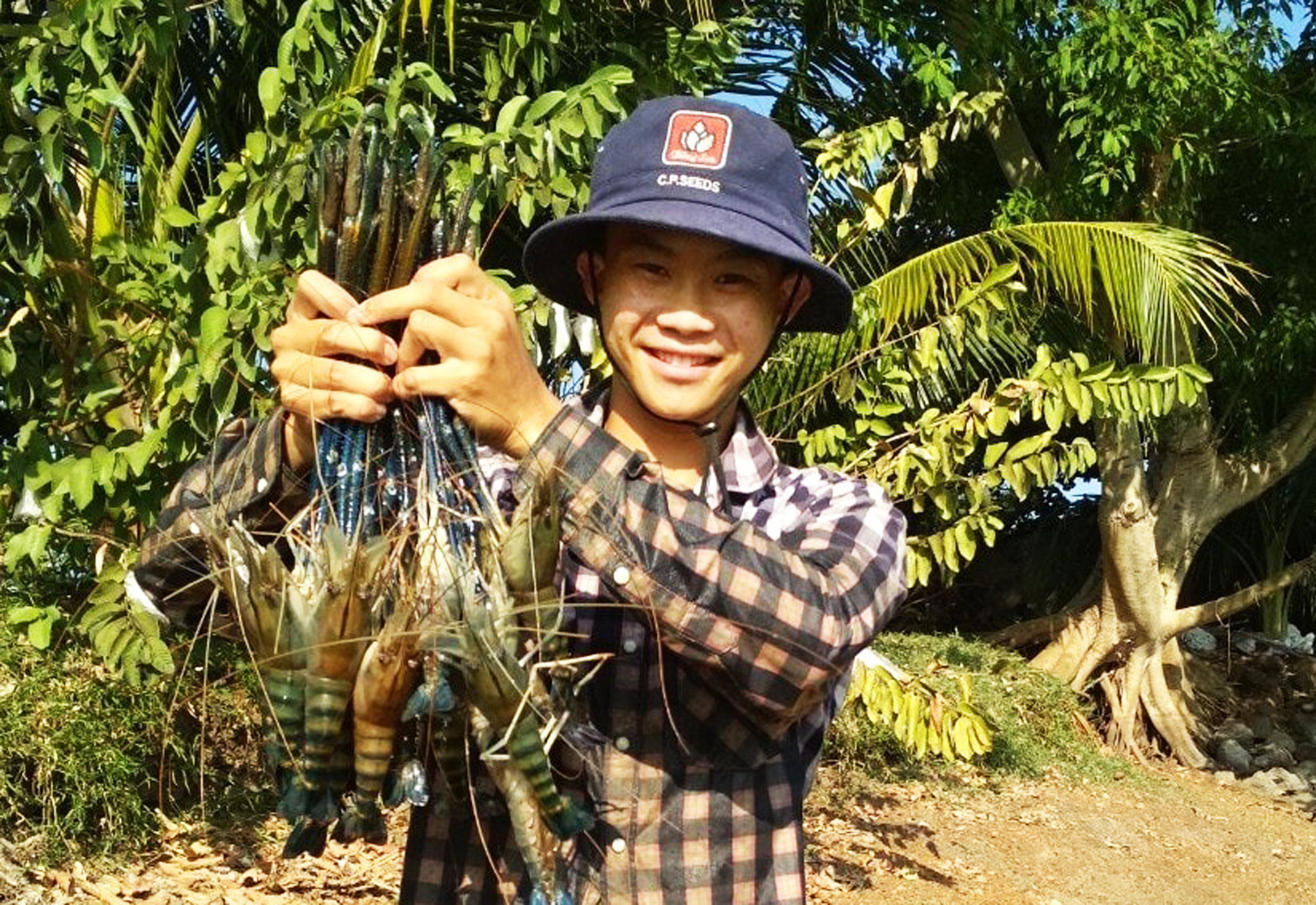 Cậu bé bị nói là điên nhưng làm gì cũng có tiền từ nông nghiệp hữu cơ - Ảnh 4.