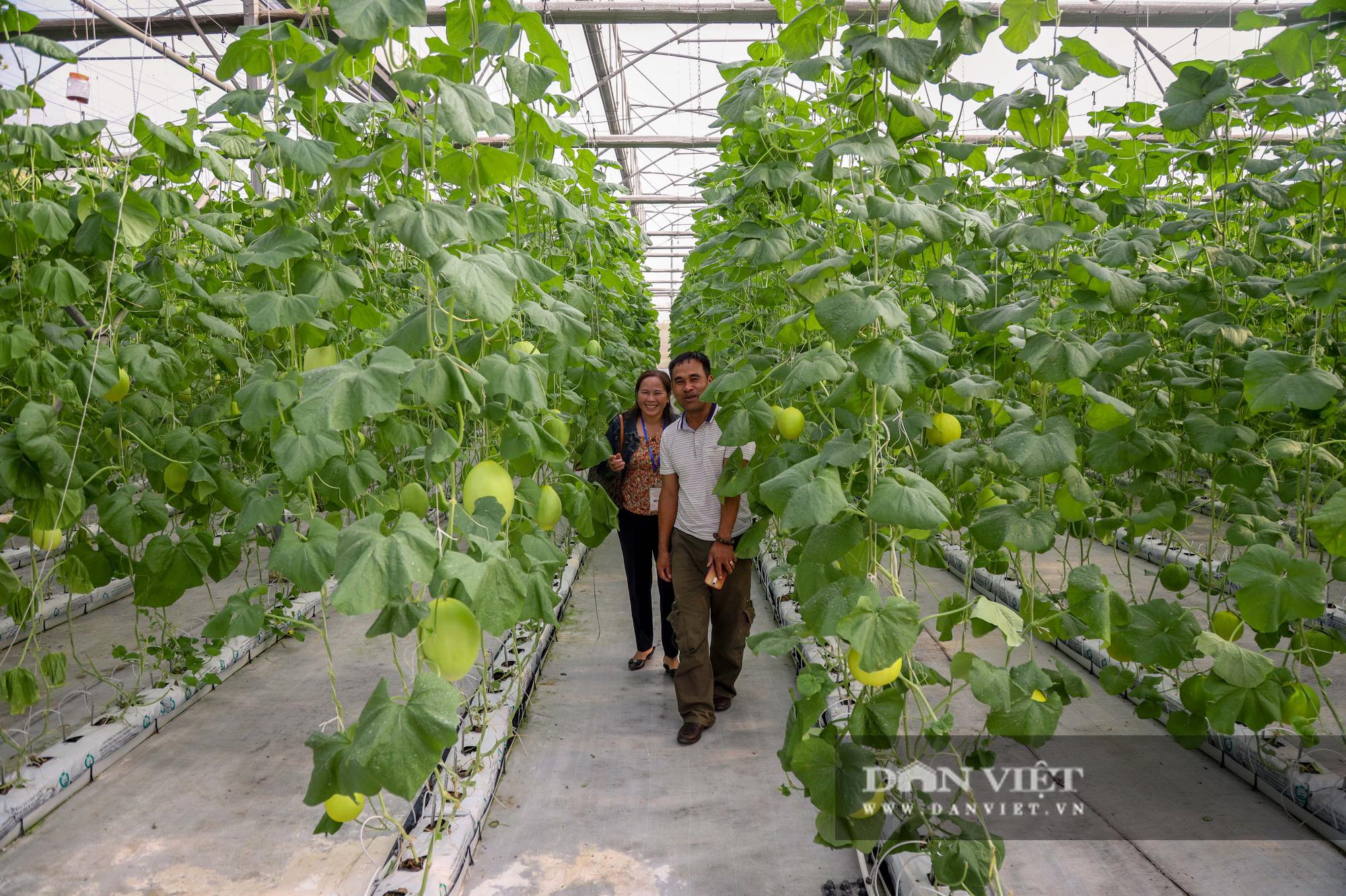 Khoa học công nghệ tiếp tục là một giải pháp quan trọng trong xây dựng nông thôn mới giai đoạn 2021 – 2025 - Ảnh 1.
