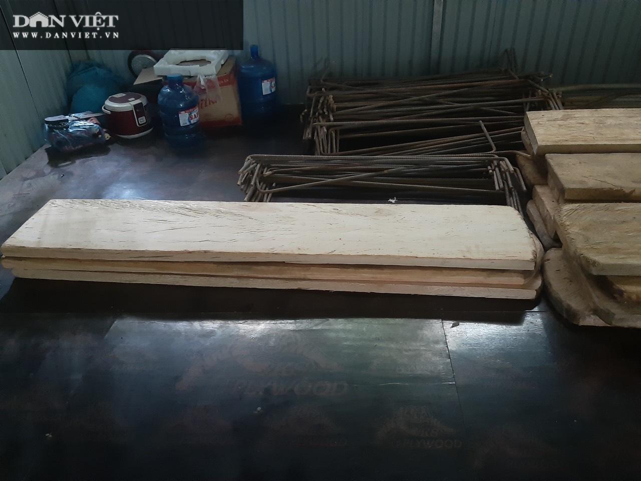 Video điều tra: Gỗ pơ mu từ rừng xanh đến tổng kho buôn gỗ - Ảnh 6.