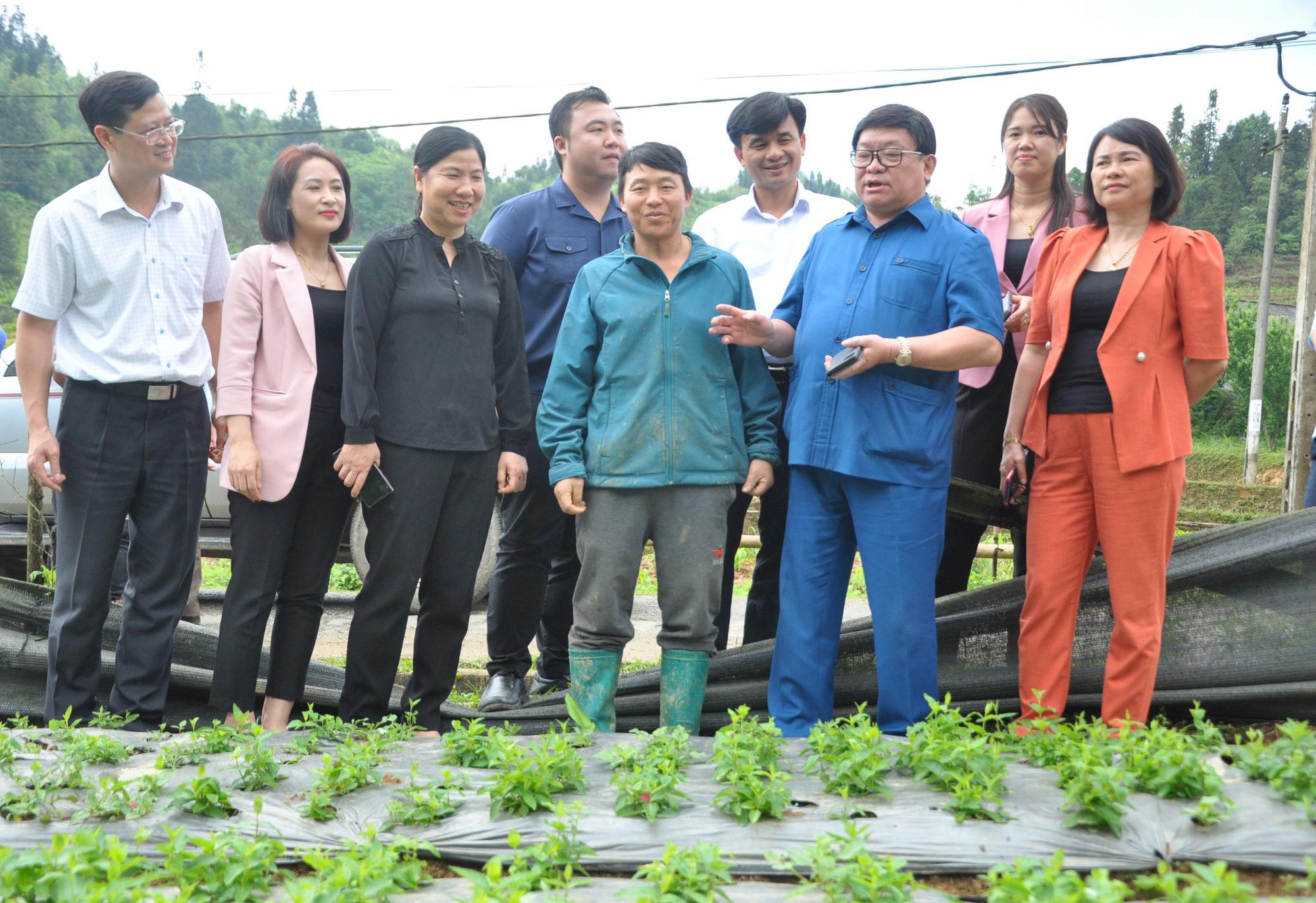 """Chủ tịch Hội Nông dân Việt Nam thăm """"đại bản doanh"""" con đặc sản thu 10 tỷ đồng mỗi năm ở Bắc Hà - Ảnh 1."""