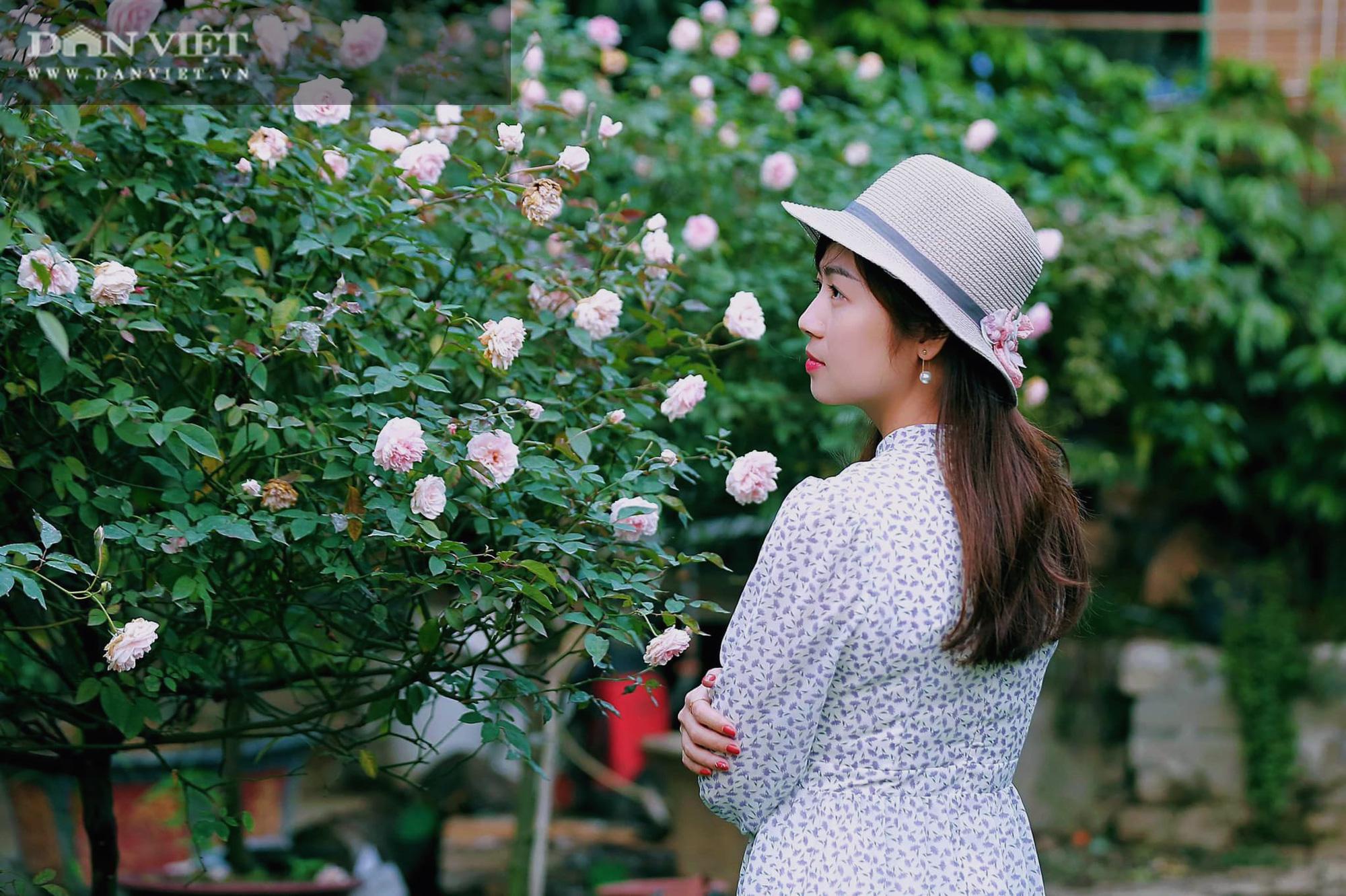 """Thái Nguyên: Trai trẻ 8X """"gác"""" bằng đại học về quê trồng thứ hoa thơm ngát cả vùng, kiếm hàng chục triệu đồng mỗi tháng - Ảnh 4."""