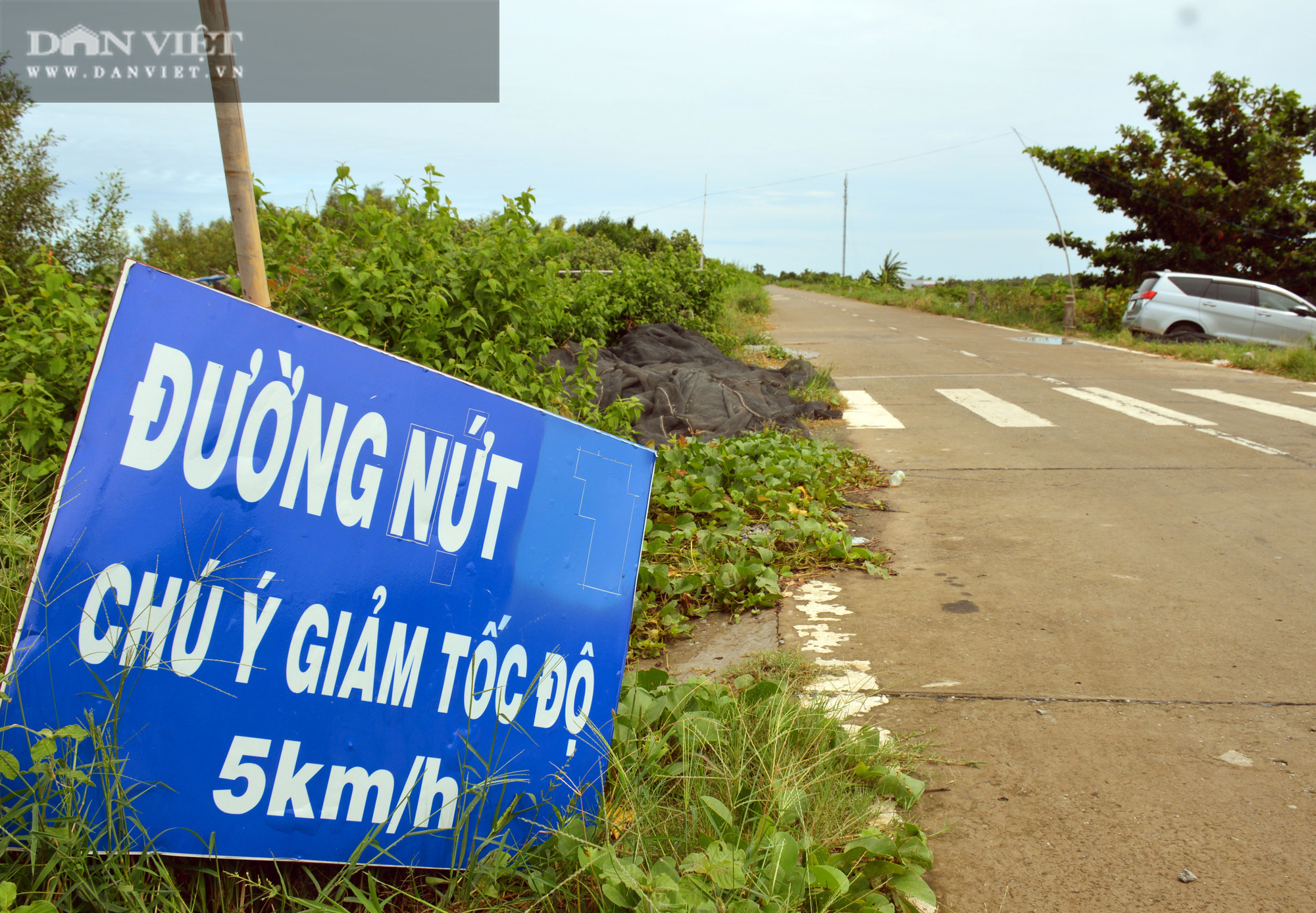 Cà Mau cho chuyên gia Hàn Quốc xử lý khe lún mặt đường đê biển Tây - Ảnh 1.