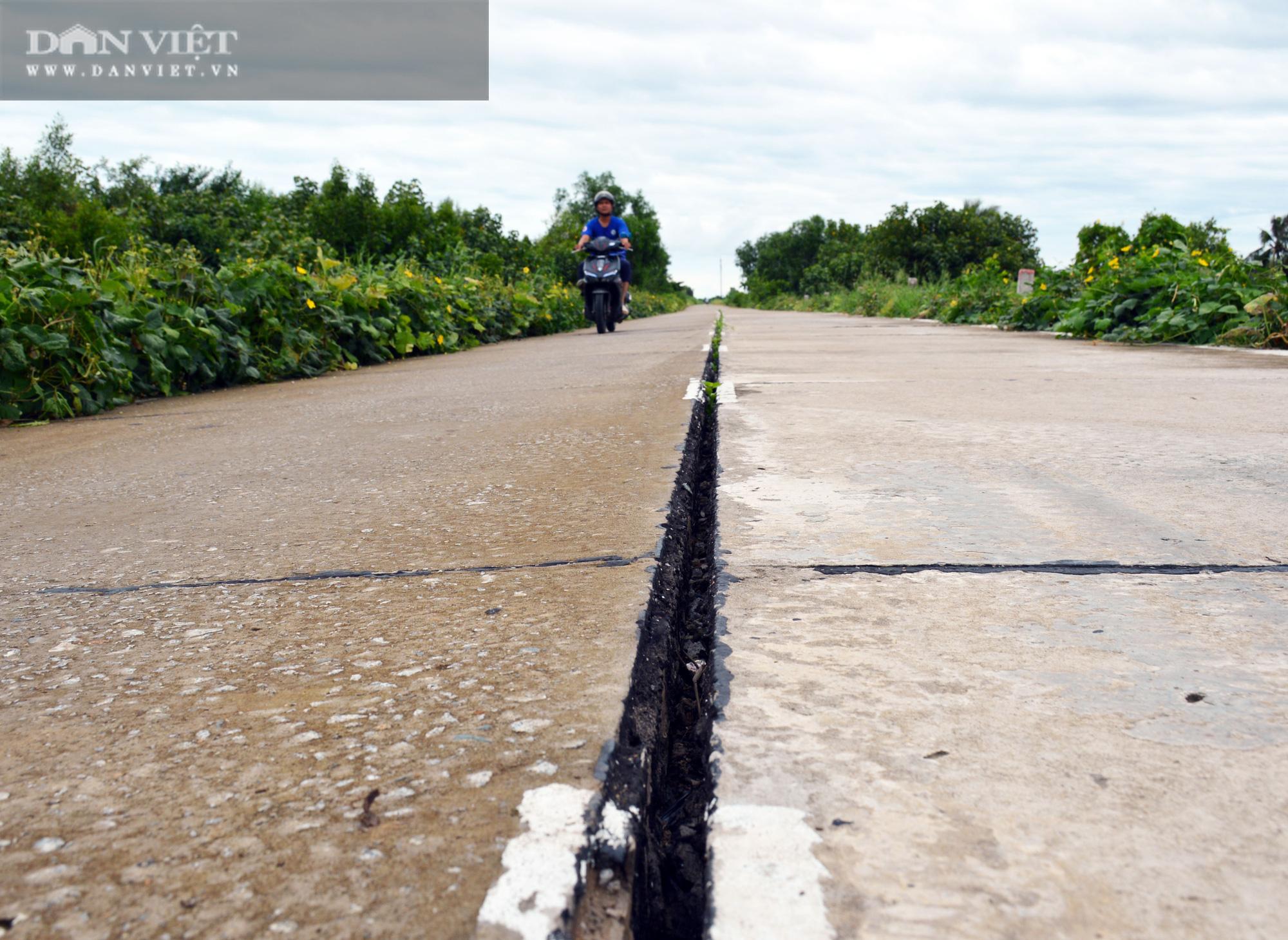 Cà Mau cho chuyên gia Hàn Quốc xử lý khe lún mặt đường đê biển Tây - Ảnh 2.