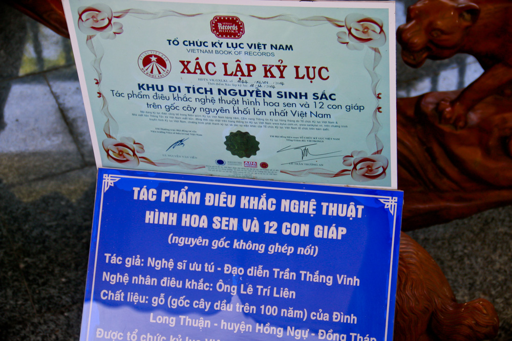 Mãn nhãn 2 tuyệt tác điêu khắc xác lập Kỷ lục Việt Nam ở Đồng Tháp có gì đặc biệt? - Ảnh 14.