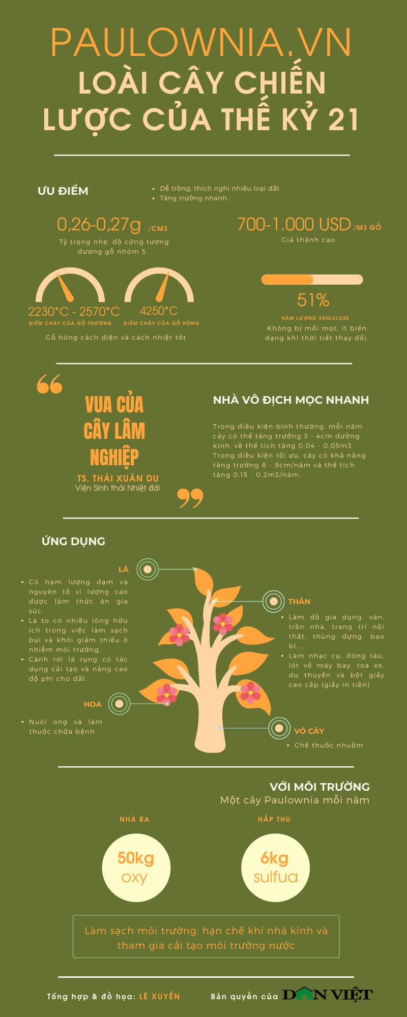 Hà Nội: Nông dân trồng thứ cây gì mà được Cục trồng trọt cấp bằng bảo hộ tới 25 năm, quý hơn gỗ pơ mu? - Ảnh 4.