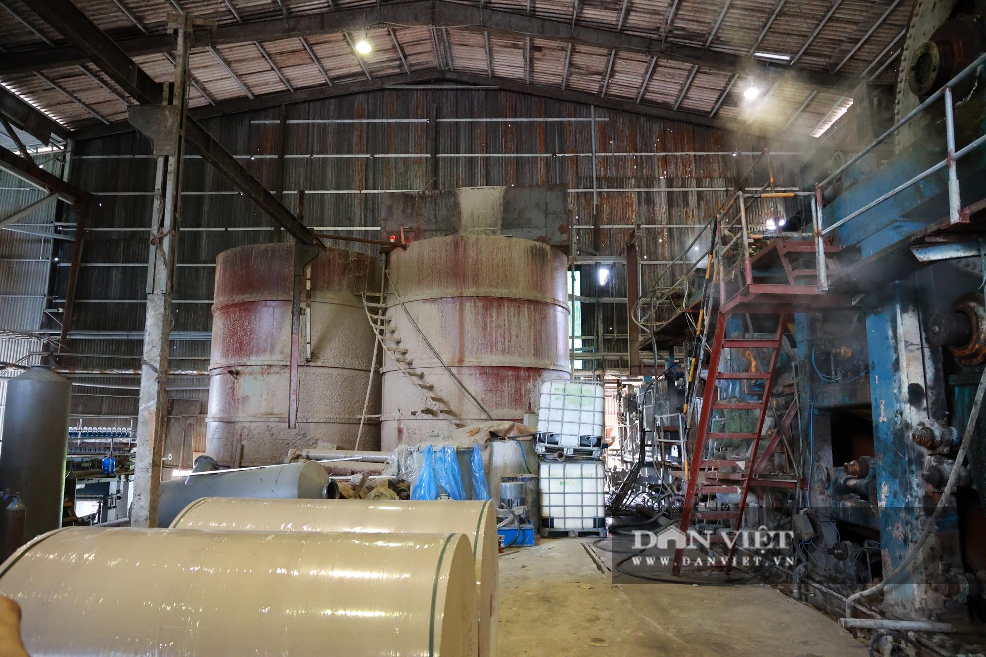 Kinh hãi bên trong nhà máy sản xuất giấy vừa bị đình chỉ ở Phong Khê - Ảnh 1.