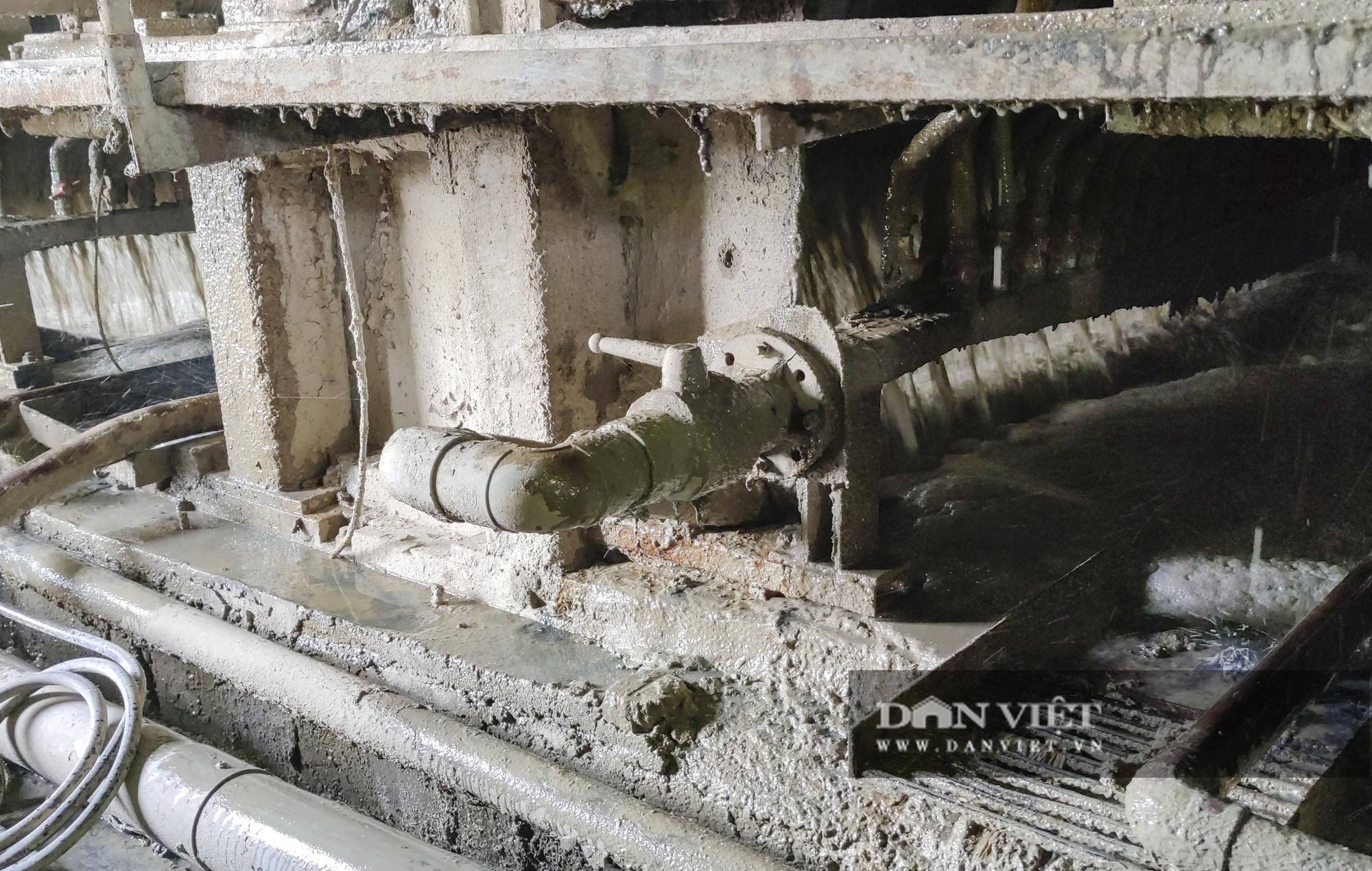 Kinh hãi bên trong nhà máy sản xuất giấy vừa bị đình chỉ ở Phong Khê - Ảnh 5.
