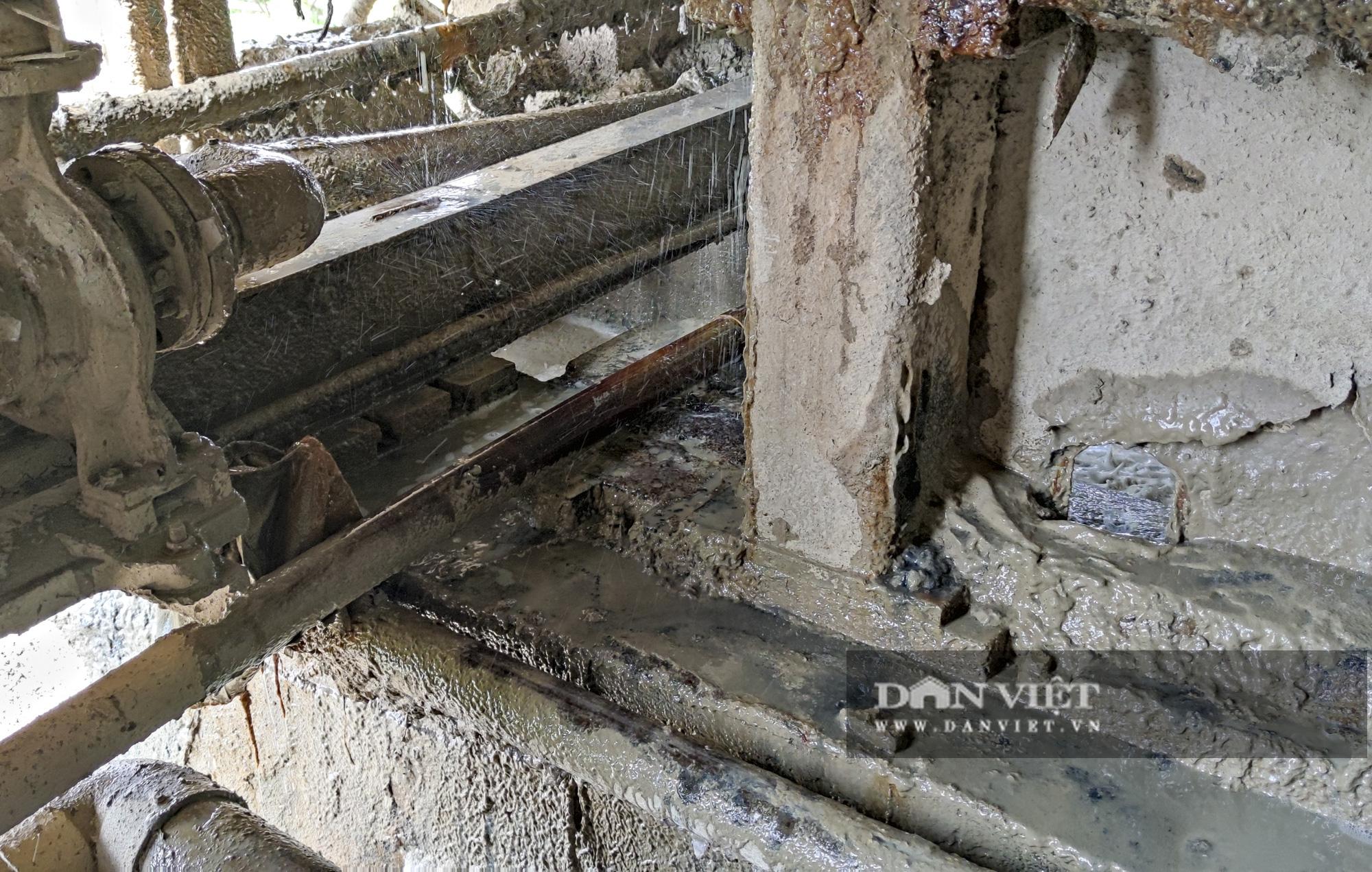 Kinh hãi bên trong nhà máy sản xuất giấy vừa bị đình chỉ ở Phong Khê - Ảnh 8.