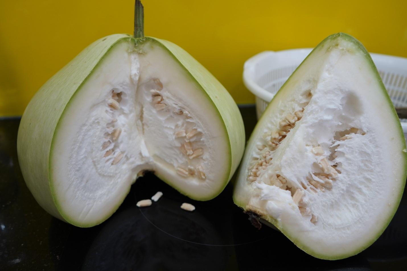 Hải Phòng: Giống bầu lạ, quả tròn khổng lồ mỗi trái nặng 15kg ăn cả tuần không hết - Ảnh 6.