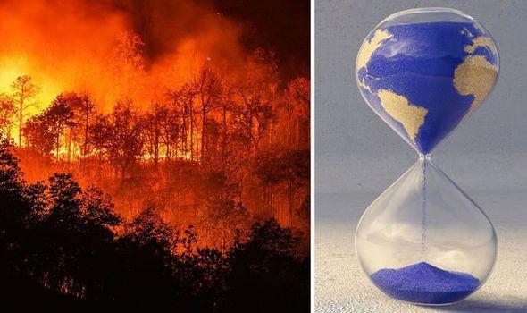 Sự suy giảm đa dạng sinh học sẽ khiến con người đứng trên bờ vực thẳm - Ảnh 1.