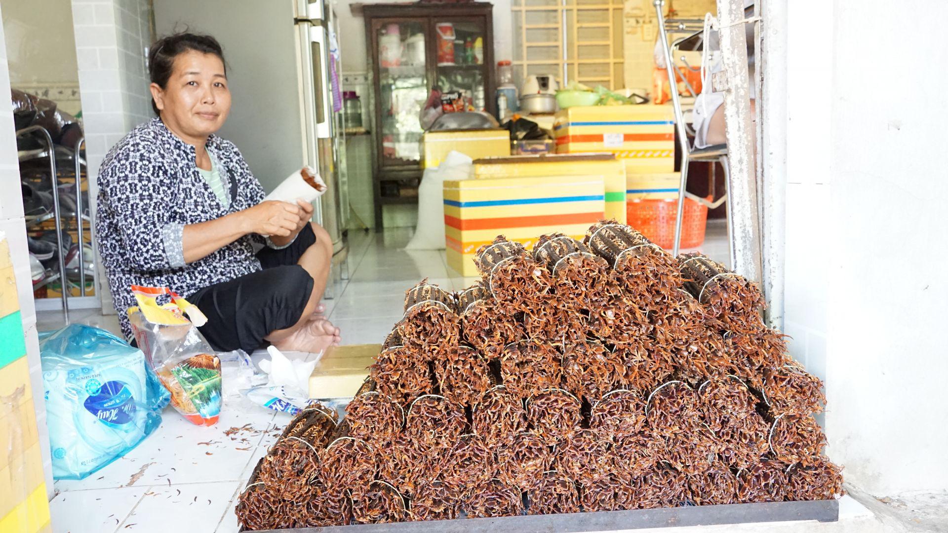 Tây Ninh: Nuôi những con rết to như ngón tay, nhìn phát ghê, thương lái Trung Quốc mua tiền triệu/kg - Ảnh 2.