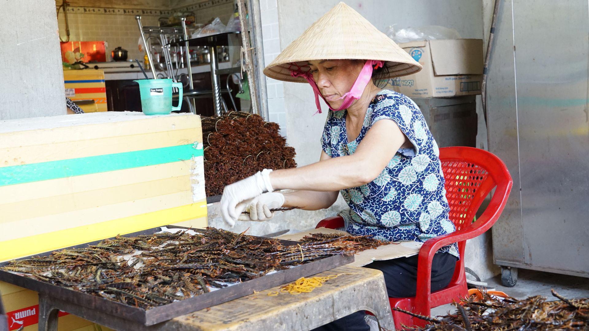 Tây Ninh: Nuôi những con rết to như ngón tay, nhìn phát ghê, thương lái Trung Quốc mua tiền triệu/kg - Ảnh 4.