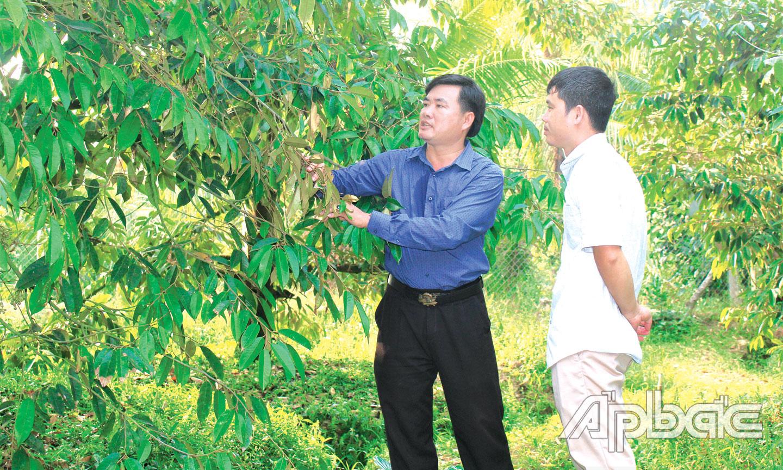 """Tiền Giang: Bỏ kiểu nuôi, trồng """"ôm đồm, lung tung"""", chuyên tâm trồng cây ra trái có gai, ông nông dân này giàu hẳn lên - Ảnh 1."""