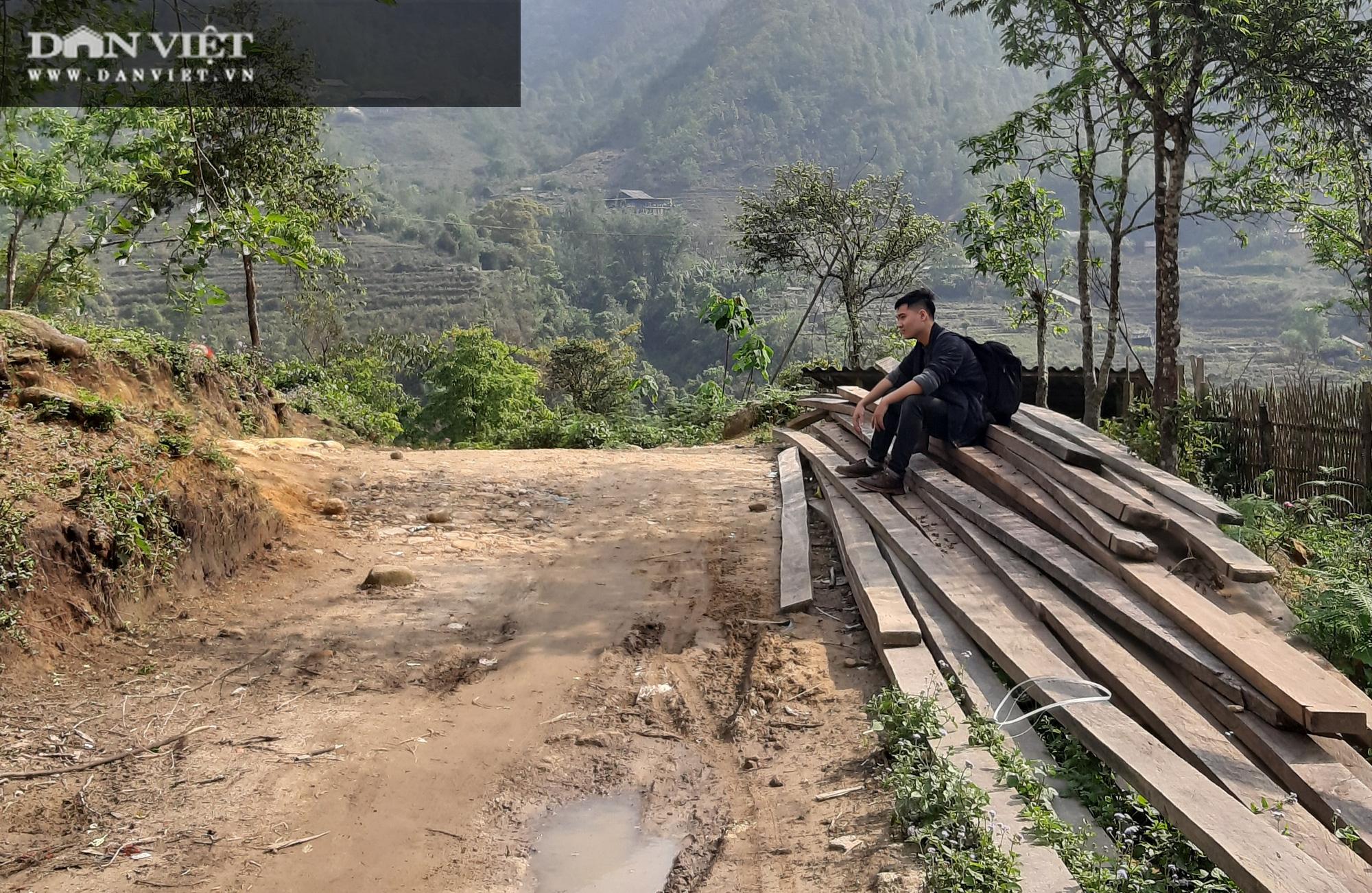 """Phá rừng pơ mu VQG Hoàng Liên (Bài 4): Phá rừng cho """"trùm buôn gỗ"""", chứ không phải để đóng quan tài! - Ảnh 6."""
